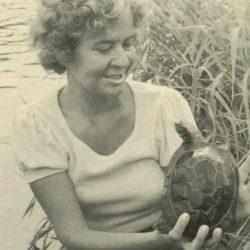 BARBARA ELLEN FROOM